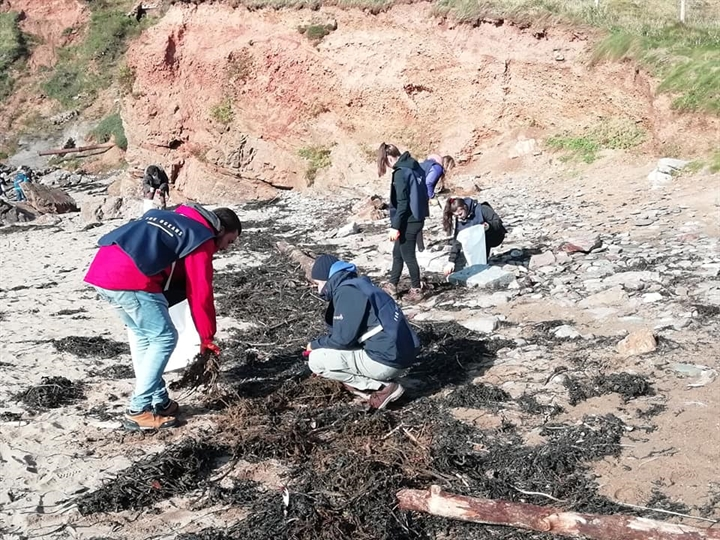 CANCELLED - Volunteer Beach Clean at Blagdon's Meadow