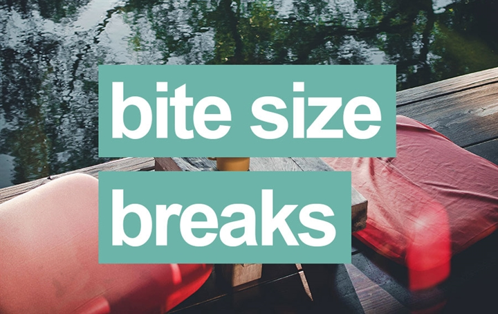 Bite Size Breaks